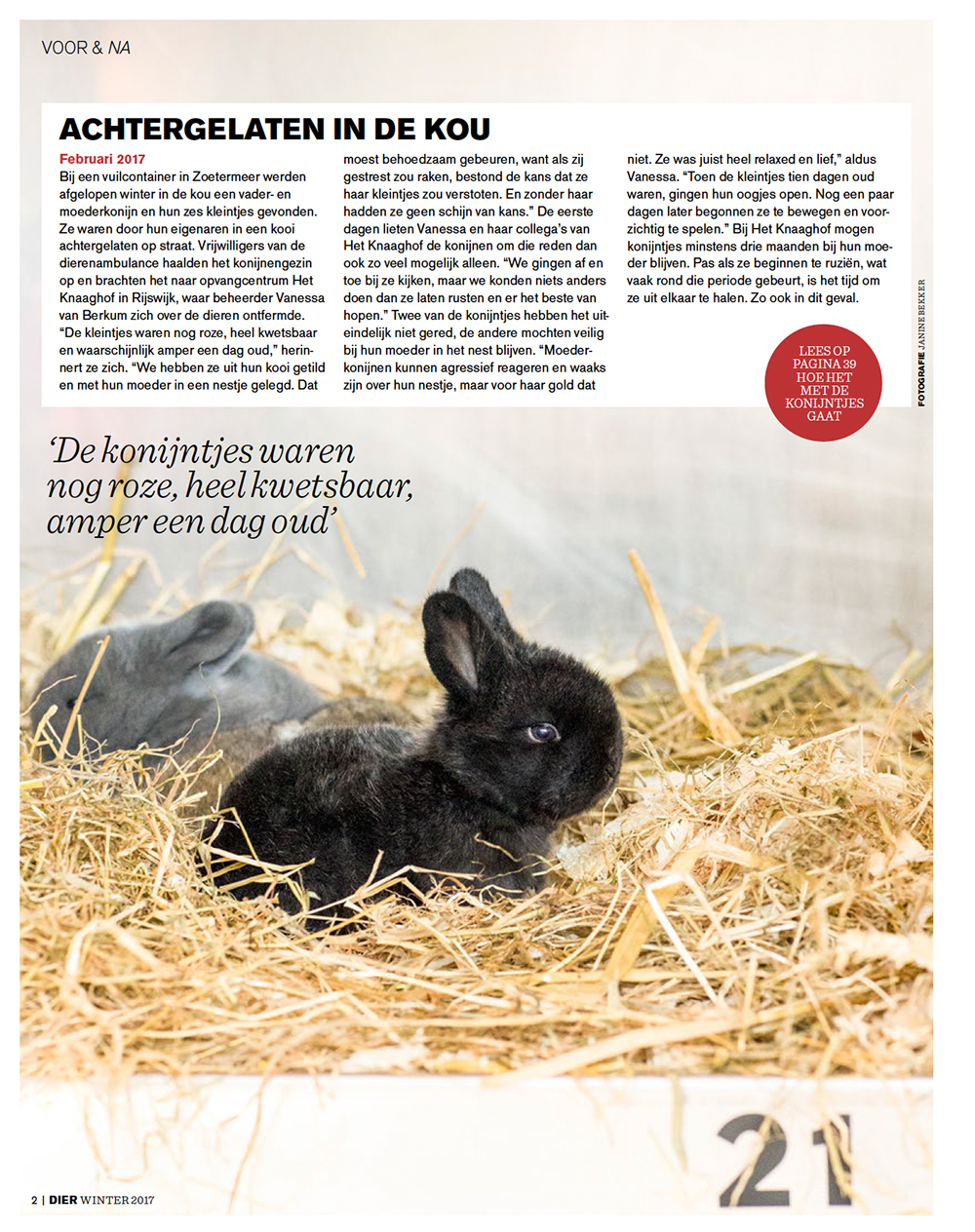 Fotografie magazine DIER Dierenbescherming